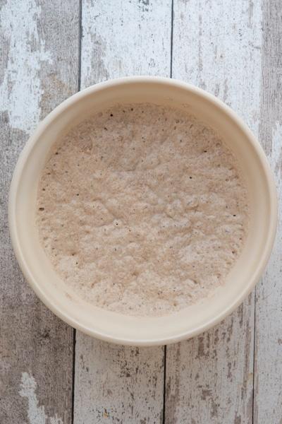 Bread biga in a white bowl.